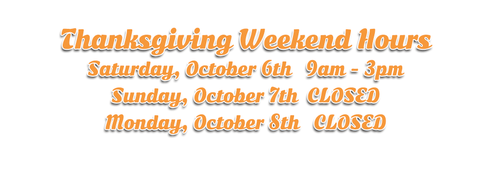 Thanksgiving Hours at Hogtown Cycles