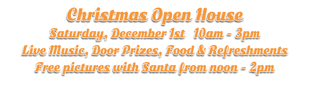 Christmas Open House at Hogtown Cycles on December 1st in Lucan, Ontario